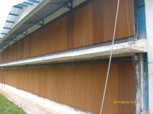 colling pad closehouse